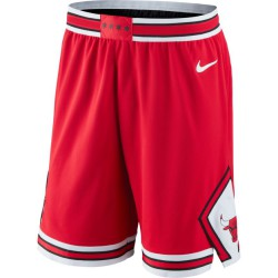 Nike Chicago Bulls Icon Edition Authentic